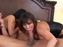 anal ass babe bdsm big-tits blowjob big-cock cougar cumshot